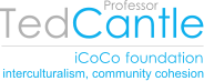 iCoCo foundation logo